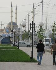 Американцы ненавязчиво указывают арабскому миру на Чечню, где ислам многие годы подавлялся