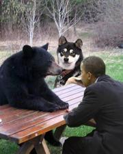 У России нет на сегодняшний день реальных планов по Кавказу, а у Обамы есть, вот и начал он быструю, хитроумную игру за Кавказ