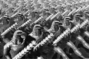 Недавно в своей статье «По евразийской дороге добра», опубликованной на информационно-аналитическом портале «Евразия» накануне Дня народного единства и 100-летия Великой Октябрьской социалистической революции, я поделился педагогическим опытом работы с ре